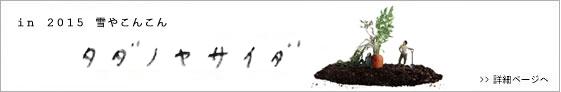 7millions-ナナミリオンズ- in 2015 雪やこんこん『タダノヤサイダ』